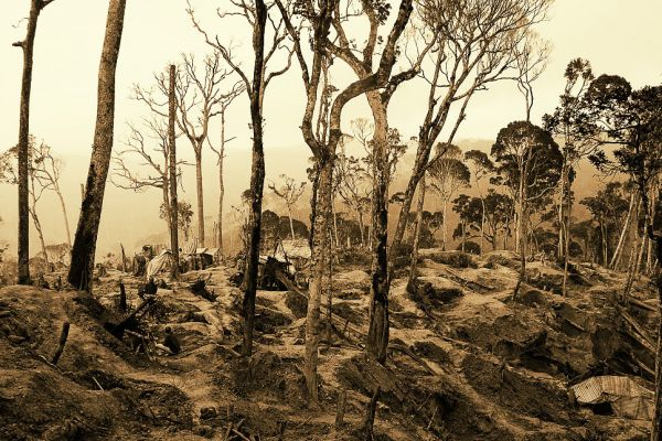 Mining pits above Moramanga