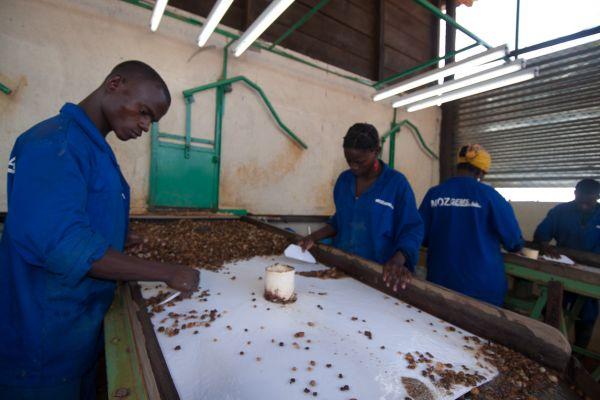 mozambique-20091213-04700C1209CF-6CD2-EC2E-29F4-82788009F992.jpg