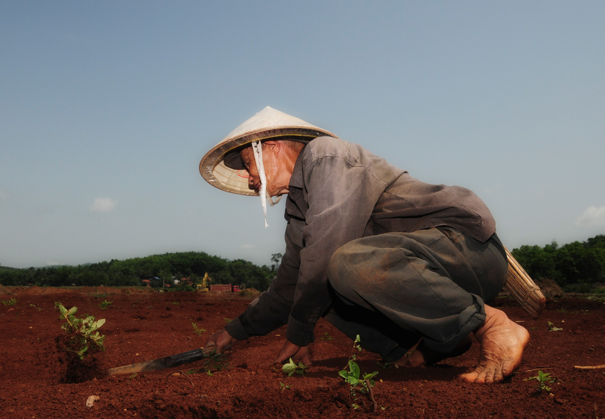While mining takes place in the background, a farmer plants the first seeds of rice on his newly reclaimed land.